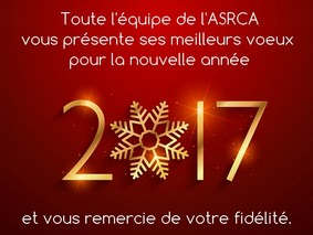 beautiful 2017 text in golden color with snowflake on red background